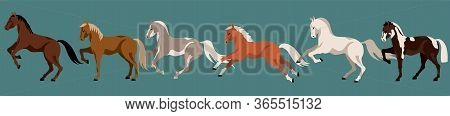 Running Horses Isolated Vector Elements. Horse Breeds. Variety Of Beautiful Farm Animals And Poses.
