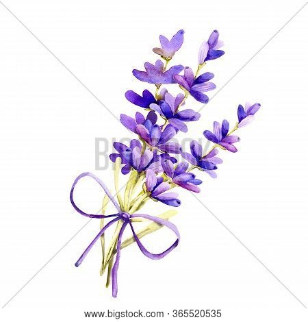 A Bouquet Of Lavender Flowers, Twigs Tied With Twine, Tow. Hand Drawn Watercolor Illustration For De
