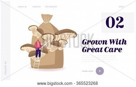 Homemade Fungiculture Landing Page Template. Tiny Male Character Stand On Ladder Prepare To Cut Ripe