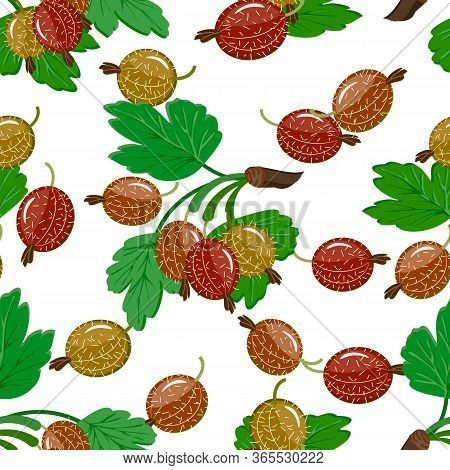 Vector Pattern Of Gooseberries.gooseberries And Leaves On A White Background In A Pattern.