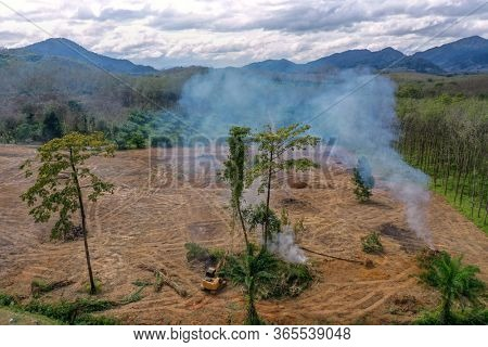 Burning forest with smoke rising. Carbon dioxide emissions may cause global warming and climate change
