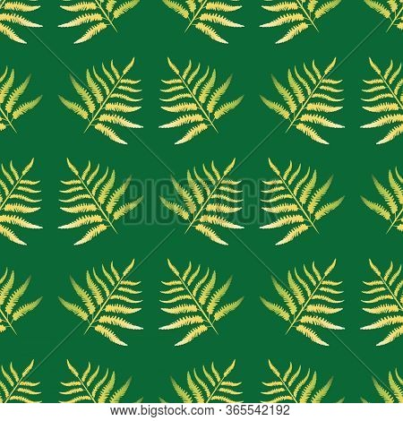 Fern Vector Seamless Pattern Background. Forest Plant Frond Monochrome Green Gold Backdrop. Geometri