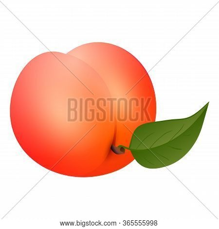 Whole Peach Icon. Cartoon Of Whole Peach Vector Icon For Web Design Isolated On White Background