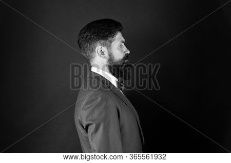 Well Groomed Man Beard In Suit. Male Fashion And Aesthetic. Businessman Formal Outfit. Classic Style