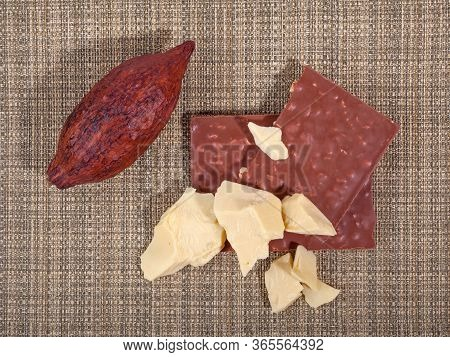 Pieces Of Natural Cocoa Butter With Cocoa Pod And Milk Chocolate. Top View