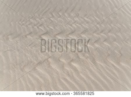 Sand Texture. Yallow Sand. Background From Fine Sand. Sand Background