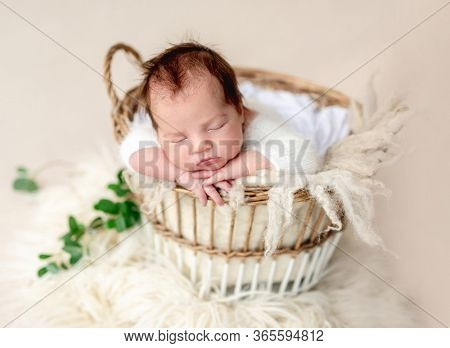 Lovely newborn sleeping in basket with head on hands