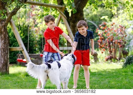 Two Kids Boys Playing With Family Dog In Garden. Laughing Children, Adorable Siblings Having Fun Wit