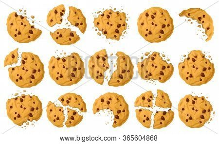 Cookies With Crumbs Vector Cartoon Set Icon. Vector Illustration Biscuit On White Background. Isolat