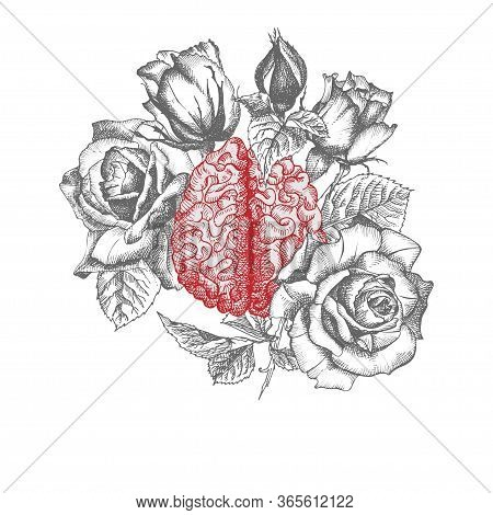 Brain With Bouquet Roses Realistic Hand-drawn Icon Of Human Internal Organ And Flower Frame. Engravi
