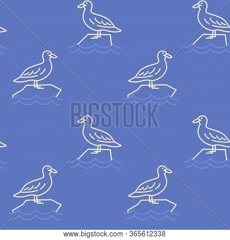 Sea Gull Icons Pattern. Gull Bird Seamless Background. Seamless Pattern Vector Illustration