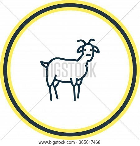 Vector Illustration Of Goat Icon Line. Beautiful Animals Element Also Can Be Used As Ungulate Icon E