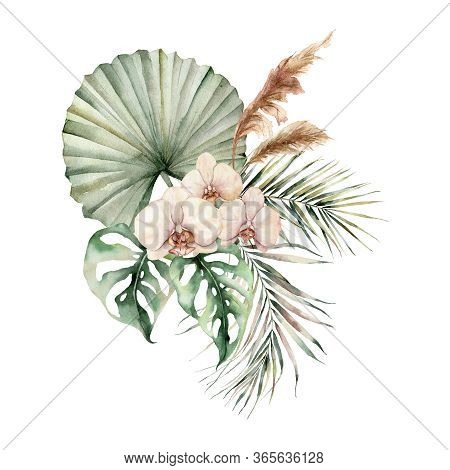 Watercolor Tropical Bouquet With Orchids And Palm Leaves. Hand Painted Flowers, Coconut And Monstera