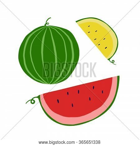 Set Of Hand Drawn Watermelon And Slice Of Red And Yellow Watermelon. Summertime Fruits On White Back