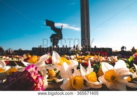 Riga, Latvia. May 10, 2020. Close Up View Of The Flowers Near Victory Park Monument In Riga, Latvia.