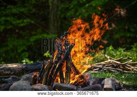 Burning Campfire Against The Background Of The Spring Forest.