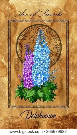 Ace Of Swords. Minor Arcana Tarot Card With Delphinium And Magic Seal. Vintage Deck Enchanted Flower