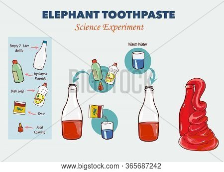 Stock Vector Illustration Of Elephant's Toothpaste Experiment