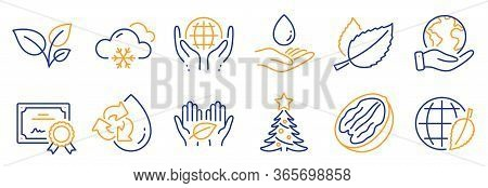 Set Of Nature Icons, Such As Snow Weather, Recycle Water. Certificate, Save Planet. Organic Tested,