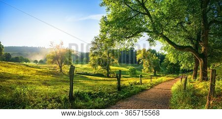 Rural Landscape With A Path, Trees And Meadows On Hills, Blue Sky And Pleasant Warm Sunshine From Th
