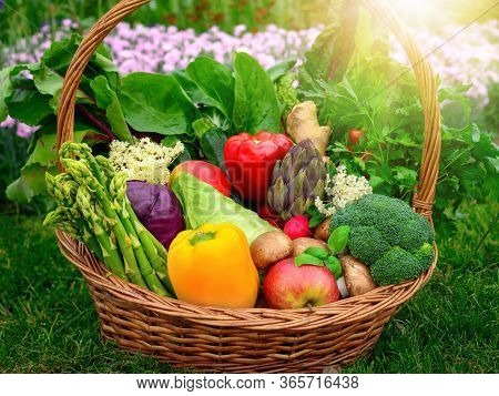 Colorful And Appetizing Vegetables And Fruits In A Nice Old-fashioned Basket In The Garden, With Gra