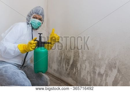 Female Worker Using Spray Bottle With Mold Removal Products And Showing Thumb Up.