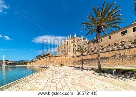 Cathedral of Santa Maria under blues sky as seen from Parc de la Mar in Palma de Mallorca, Spain.