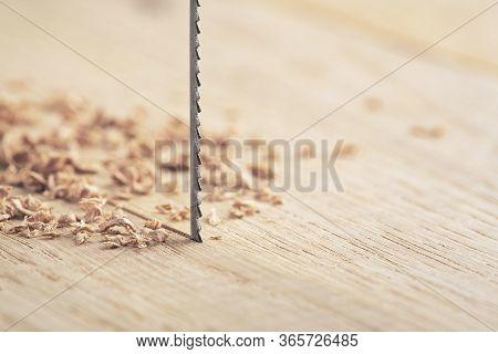 Fret Saw Cutting Wooden Oak Plank. Jig Saw Cut Clean Timber Board.