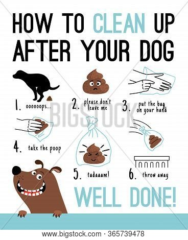 Clean Up After Your Dog. Dogs Poop Hands Cleaning Vector Illustration, Pick Up Poo After Pets, Perso