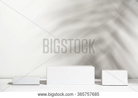 White Boxes Of Different Forms Standing On Shadow Background. Empty Unbranded Shopfront. Showcase Fo