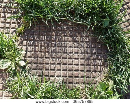 Cast Iron Tile Consisting Of A Square Pattern. Tile Surrounded By Grass