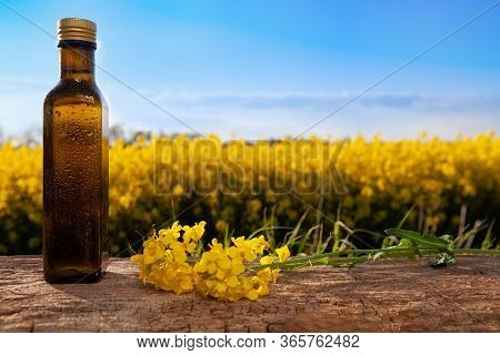 Oilseed Rape In Bottle With Crop In Background. Bottle Of Oilseed Rape On Wooden Surface With Yellow