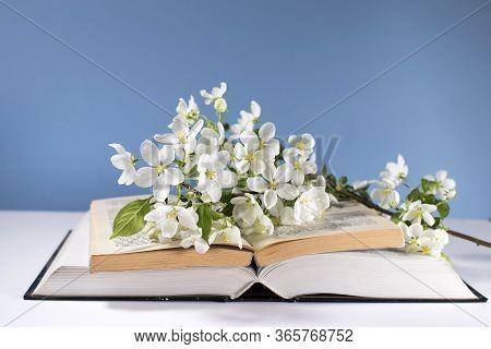 A Branch Of A Blossoming Apple Tree Or Cherry On An Open Book On A Background Of A Blue Wall. Concep