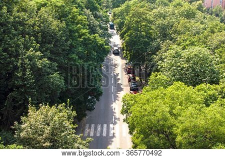 Asphalt Road With Cars Between Green Trees, Top View