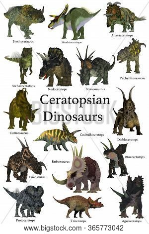 Ceratopsian Dinosaurs 3d Illustration - A Collection Set Of Ceratops Beaked Dinosaurs From The Creta