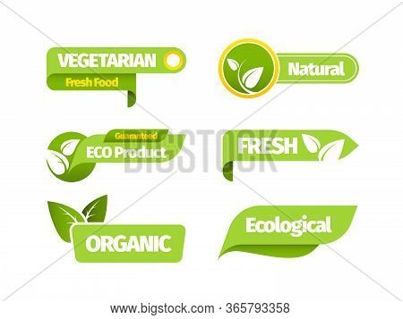 Organic Vegetarian Banner Set. Natural Organic Vegetarian Design Green Leaf Sticker Fresh Bio Farm L