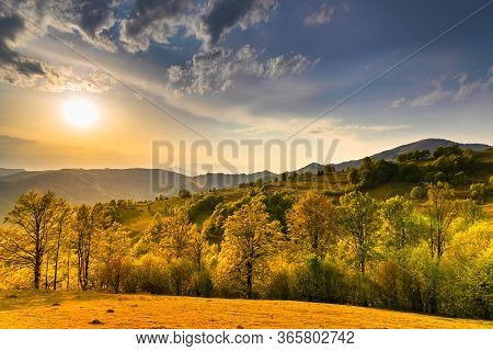 Beautiful Rural Landscape In Sunset Light. Golden Hour