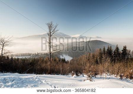 Winter Moravskoslezske Beskydy Mountains Scenery From Hiking Trail Above Butoranka Bellow Lysa Hora
