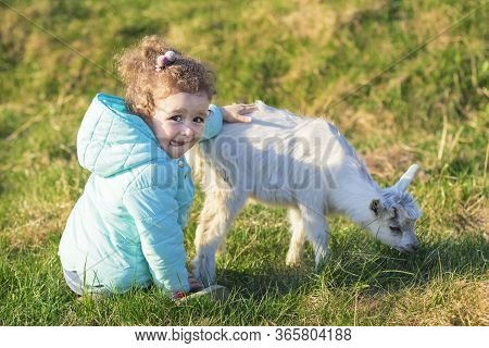 Little Cute Pretty Girl, Kid, Child Hugging, Playing With Baby Goat Or Lamb On Rancho, Farm, Yard In