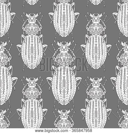 Long Whiskered Beetles On A Gray Background. Individual White Insects. Vector Image. Seamless Patter