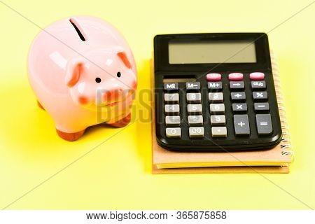 Finance Department. Credit Debt Concept. Economics And Finance. Piggy Bank Pink Pig And Calculator.