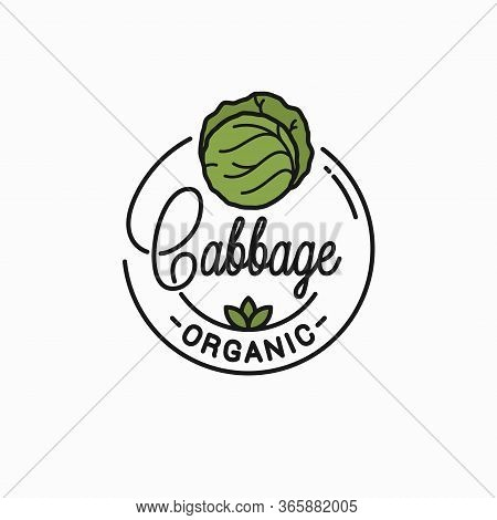 Cabbage Vegetable Logo. Round Linear Green Cabbage