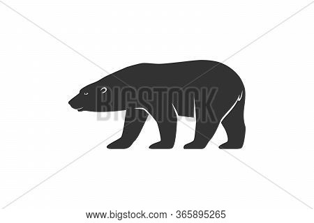 Polar Bear Graphic Icon. Arctic Bear Sign Isolated On White Background. White Bear Symbol. Vector Il