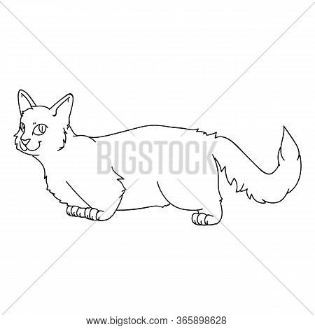 Cute Cartoon Munchkin Cat Lineart Vector Clipart. Pedigree Kitty Breed For Cat Lovers. Purebred Grey