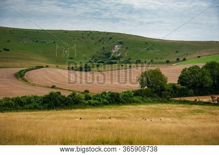 Fields And Sheeps Around Herstmonceux, East Sussex, England. Brick Herstmonceux Castle In England (e