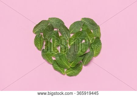 Fresh Green Leaves Of Mint, Lemon Balm, Peppermint In The Shape Of Heart On Pink Background Top View
