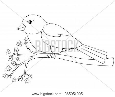 Little Bird - Sparrow Sitting On A Flowering Branch - Linear Vector Spring Picture For Coloring. Cut