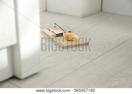 Mousetrap With Piece Of Cheese On Floor Indoors. Pest Control