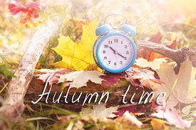 Autumn Time. Vintage Alarm Clock And Maple Tree Leaves In Autumn Forest. Fall Season Background. Fal
