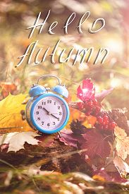 Hello Autumn. Vintage Alarm Clock And Maple Tree Leaves In Autumn Forest. Fall Season Background. Fa